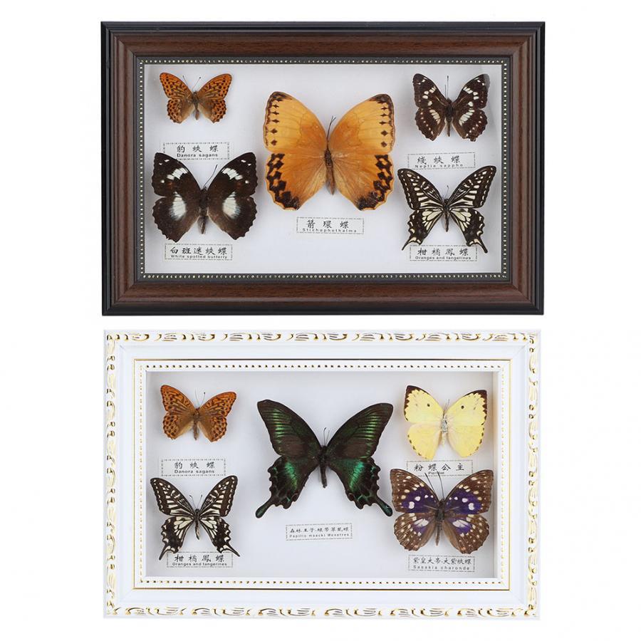 Изысканный подарок на день рождения, 5 шт., фоторамка с бабочками, образец, подарок ручной работы, украшение для дома, украшения для дома