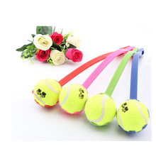 Pet Toy Interactive Props Dog Throw Tennis Ball Toy With Handle Pet Dog Supplies Throw Play Toy(China)