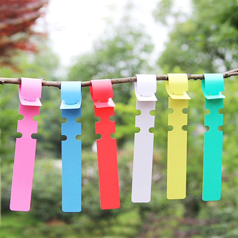 100 Pcs Plant Tags Garden Nursery Label Hanging Tree Markers Seedling Plant Fruit Trees Signs Prompt Card Classification Tool