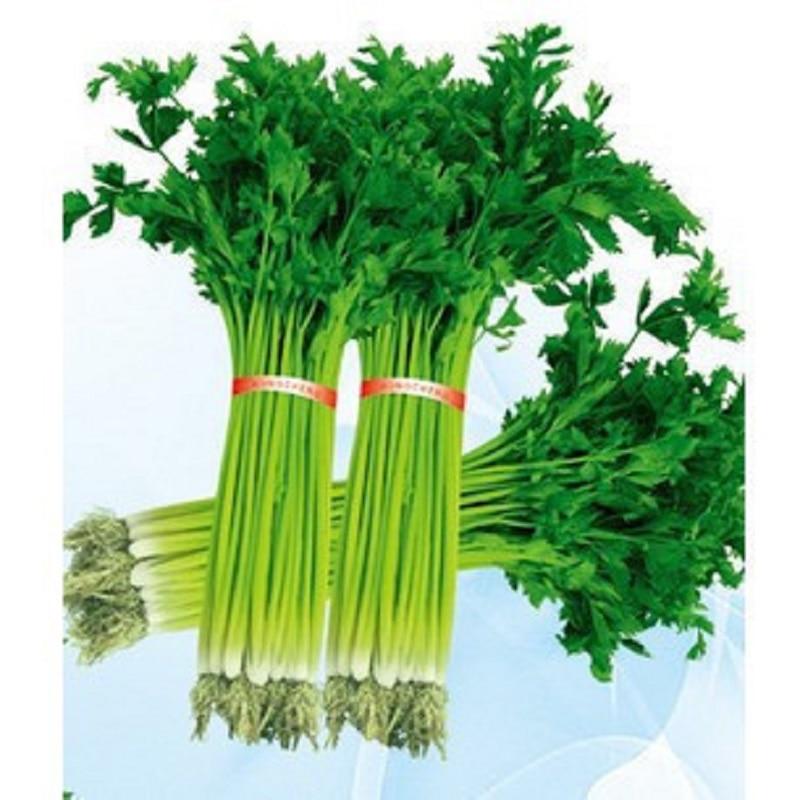 Японский маленький петрушка бонсай шт. 50 шт. органический растительный бонсай