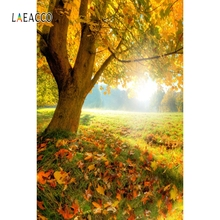 Laeacco Autumn Park Tree Fallen Leaves Bench Portrait Photography Backgrounds Customized Photographic Backdrops For Photo Studio
