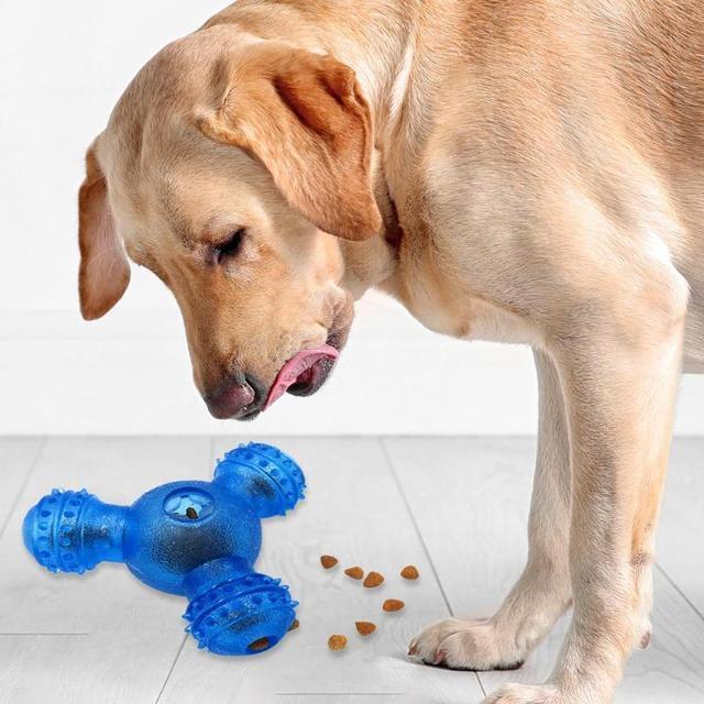 Rubber Feeder Ball for Dog 5