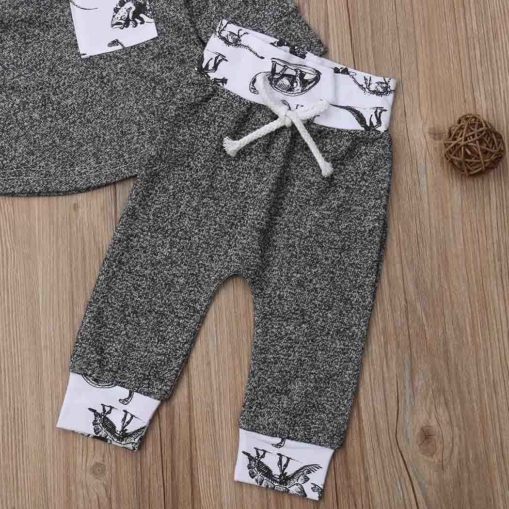 Baby Girls Boys Cute Cartoon Hooded Tops and Long Pants Patchwork All Seasons Outfits Everyday, Holiday Set