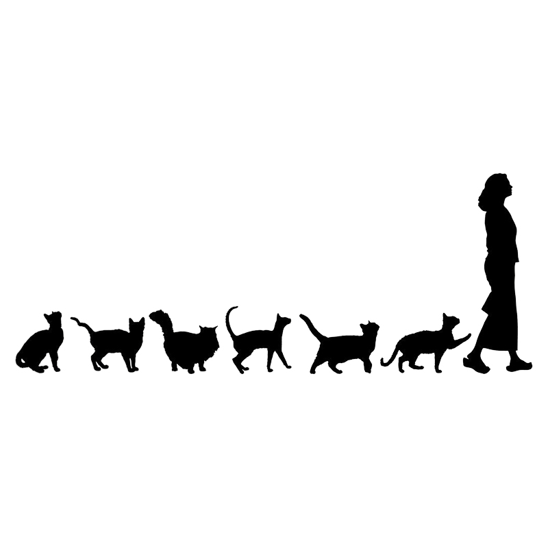 20*7.8cm Cats Crazy Cat Lady Woman Cute Funny Car Window Decal Bumper Sticker Pet Pets Vinyl Car Wrap Decor Decals-in Car Stickers from Automobiles & Motorcycles