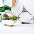 Минималистичный восьмиугольный геометрический настенный подвесной стол суккуленты керамический цветочный горшок Бамбуковый Поднос Набо...