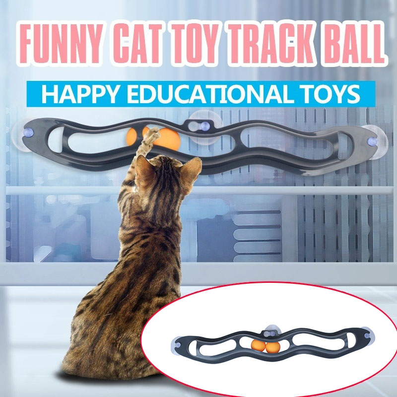 Cat Toys Interactive Track Ball Window Suction Cup Pet Toy Accessories WXV Sale