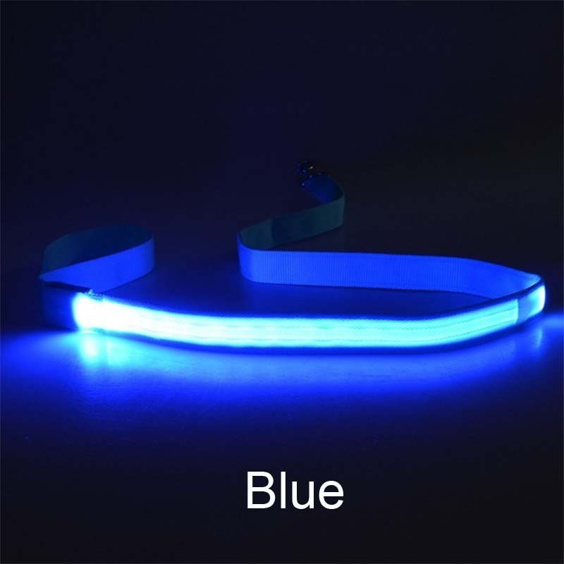 Nylon LED Leash Night Safety LED Flashing Glow In Dark Dog Collar Pet Supplies Cat Drawing Small Lead Retractable Dog Leash in Leashes from Home Garden