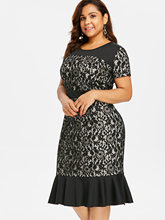 Retro Plus Size Lace Panel Dress for Women