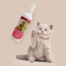 Cat Scratch Deterrent Spray Natural No Stimulation to Effectively Stop Cat from Scratching Furniture  Improve Cat Excitement Toy 8in1 nm cat anti gadget no jar no spraying spray 710 ml 5057815
