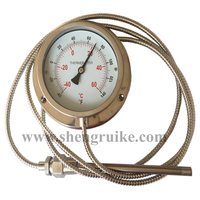 Capillary bimetal thermometer SS 304 case  best price  good quality