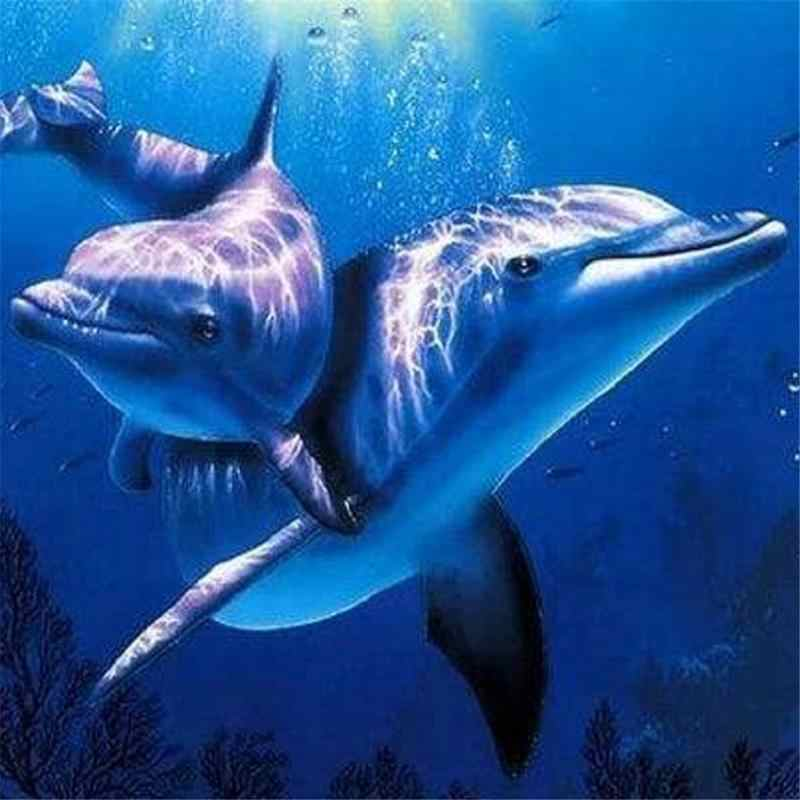 DIY Digital 3D  Painting By Digital Paint Drawing Coloring Dolphin By Digital Canvas Hand Painted Picture Wall Decoration