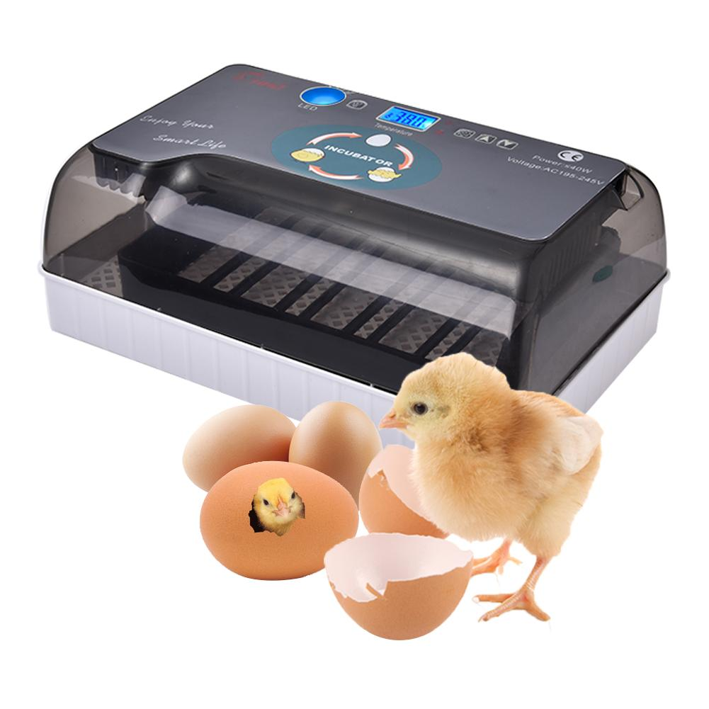 Egg Incubator Fully Automatic LED Efficient Lighting Digitally Adjustable Egg Tray Suitable For Chicken Duck Goose RustproofEgg Incubator Fully Automatic LED Efficient Lighting Digitally Adjustable Egg Tray Suitable For Chicken Duck Goose Rustproof