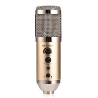 Vocal Mic Professional Large Diaphragm Studio Recording Microphone For Computer Mobile Phone Champagne Color MK F500TL