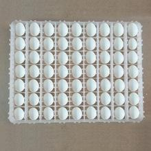 Incubator Egg Tray Special Automatic Hatching Machine High Temperature Resistance Three Specifications Egg Tray цена и фото