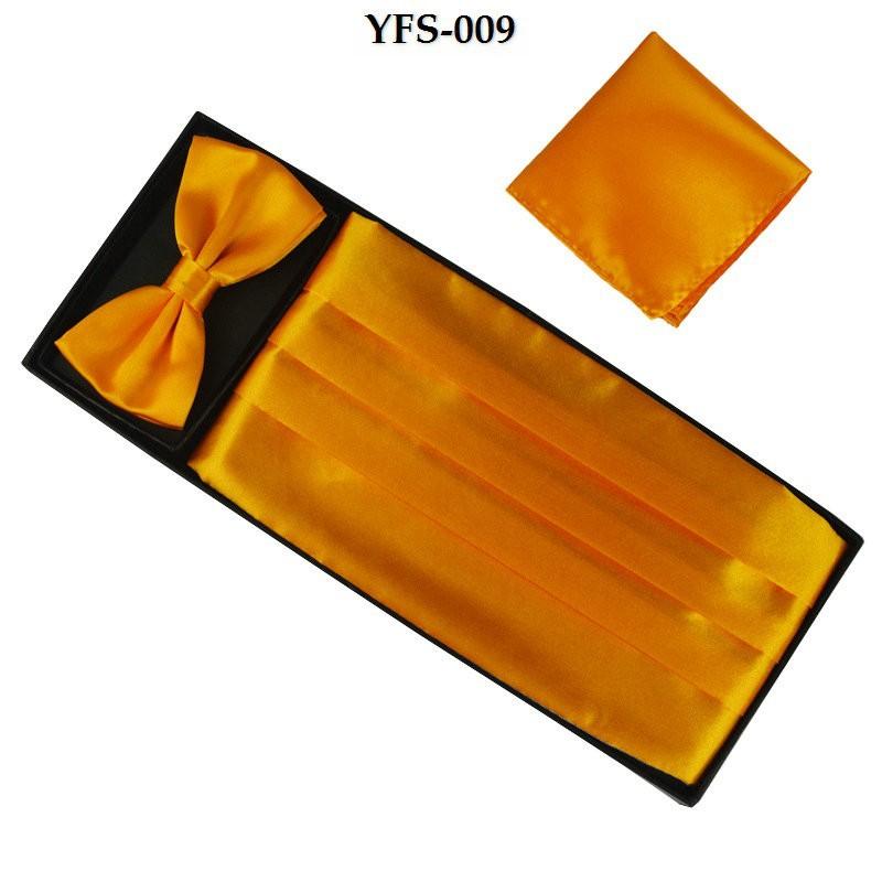 YFS-009