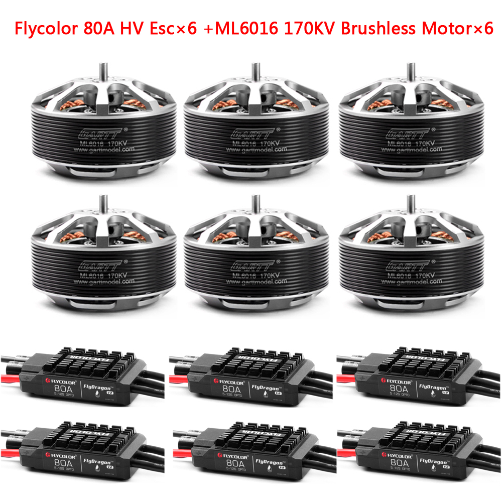 GARTT 6pcs ML 6016 170/310 KV Brushless Motor+6pcs Flycolor 80A HV Brushless ESC For Plant Protection Operations Hexacopter садовая химия zi jane plant protection station 38 200g 80%