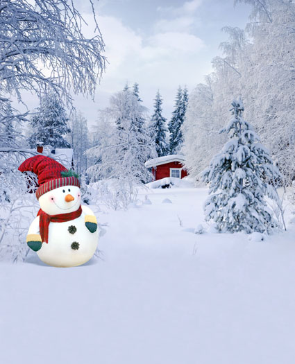 Winter snowman photography backdrops Christmas vinyl digital fabric photographic background for photo studio portrait kate wood photography microfiber background christmas theme snowman photographic backdrops for children studio photo props