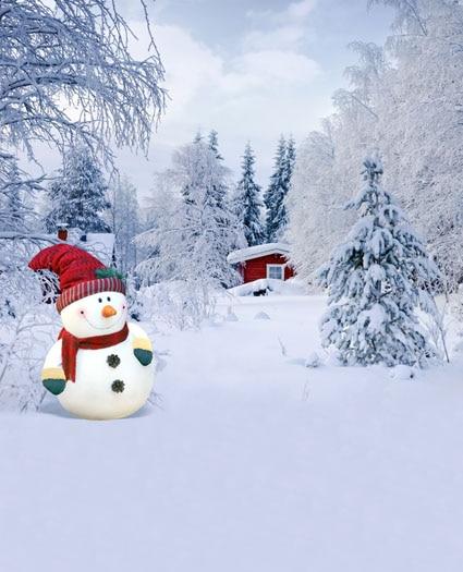 Winter snowman photography backdrops Christmas vinyl digital fabric photographic background for photo studio portrait 7x5ft christmas style wallpaper children baby photography backdrops vinyl background for photo studio christmas backdrops st 750