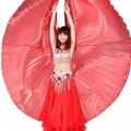 2017 new style 1Pcs High Quality Beautiful Dance Wear Wing Costume Belly Dance Wings Hot Selling Gloden Color only Wing GRS-370