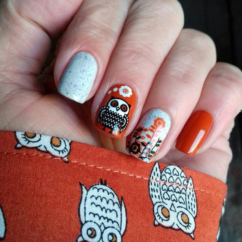 Born Pretty Owl Design Flower Nail Art Stamp Template 66cm Square