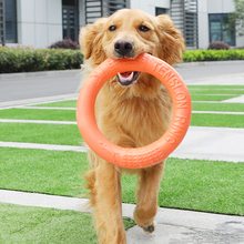 Pet Flying Discs EVA Training Ring Floating Motion Tools Dog Chew Toy Pitbull French Bulldog Interactive Outdoors Toys