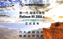Hobbywing Platinum HV 200A V4 6-14S Lipo OPTO Brushless ESC for RC Drone Quadrocopter Heli copter