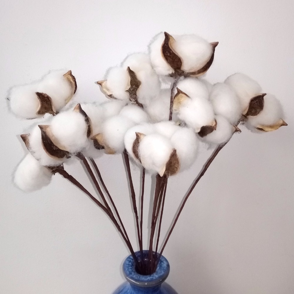 20 pcs White Natural Cotton Boll Balls Wire Stem 12\'\' Length for ...