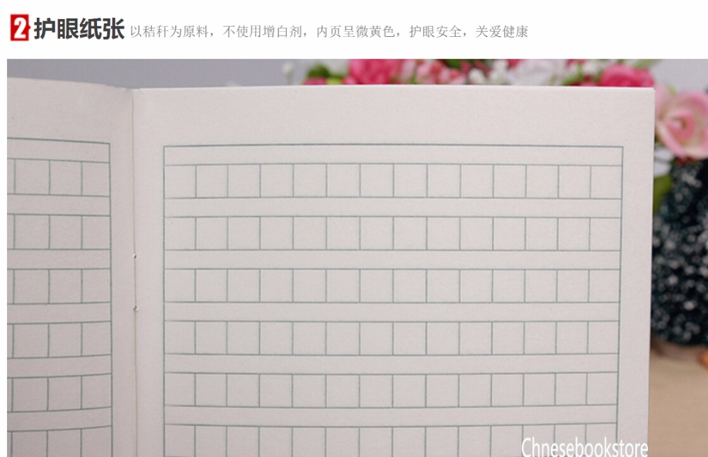 chinese essay paper