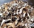 Venda quente 0.8 kg de Cogumelos de Ostra de Ostra polissacarídeo Chinês plantio supplyment têm uma rica base de atacado