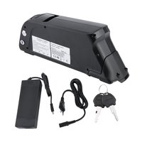 48V 10AH 480W Electric Vehicle Lithium ion Battery Pack Electric Bicycle Battery