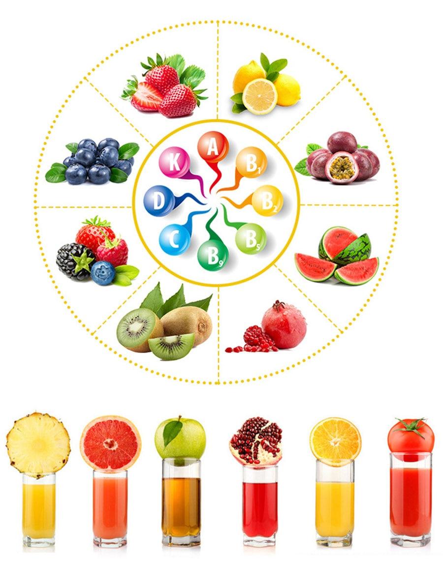 Manual juicer pomegranate juice squeezer pressure lemon sugar cane juice  H0032