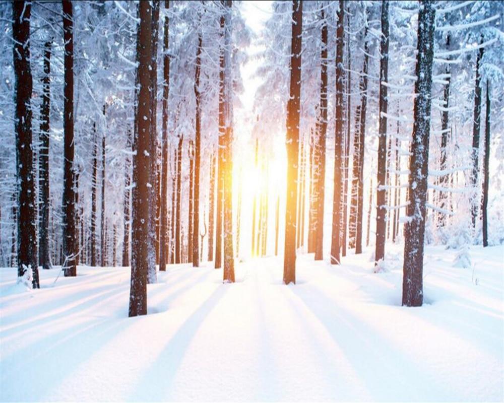 Beibehang personalizzare qualsiasi dimensione foto sfondo for Paesaggi invernali per desktop