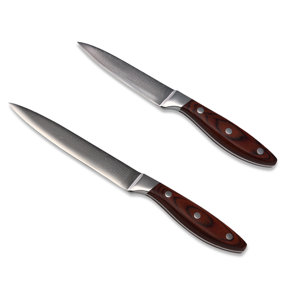 Kitchen Knife <font><b>Set</b></font> 5 Inch Utility 3.5 Inch Paring Damascus Knife 67 Layers Of Damascus Steel VG10 Core Japanese Cooking Knives