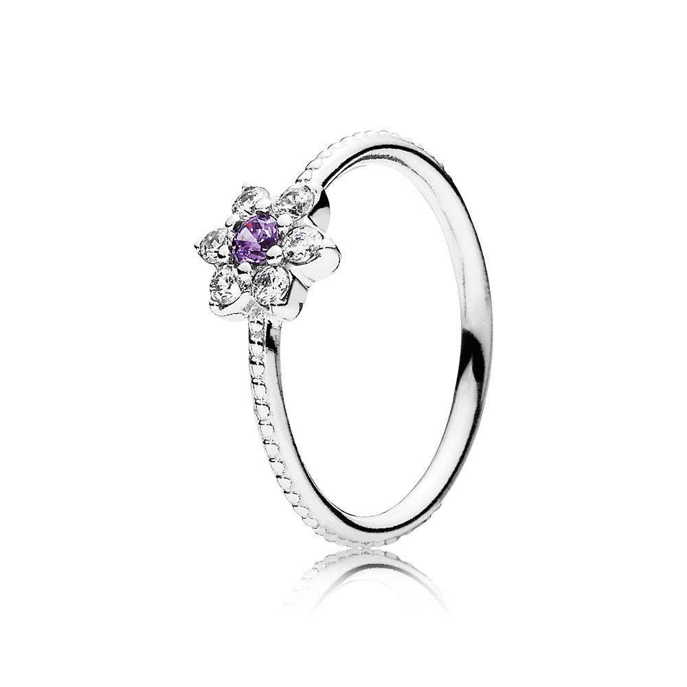 CHAMSS 2019 Years Autumn Season New Forget Me Not Ring Purple Clear CZ Women Classic Fashion Jewelry Anniversary Gift 190990ACZ(China)