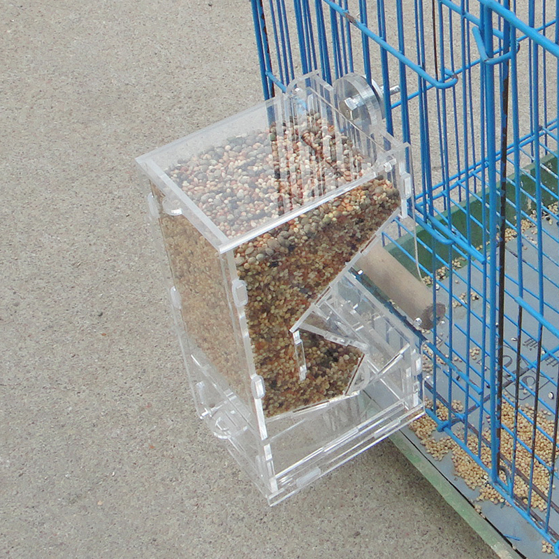 Bird automatic feeder food container chicken parrot for Bird food holder
