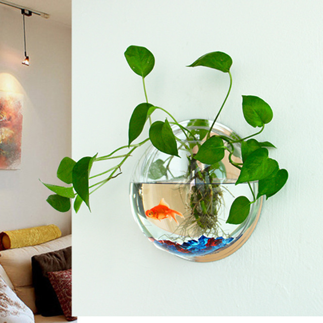 Buy aquarium acrylic fish tank wall for Plant with fish in vase
