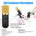 MK-F100TL F100TL Radio BroadcastWired Recording Microphone with Stand for Chatting Singing Karaoke PC Laptop Skype Recording