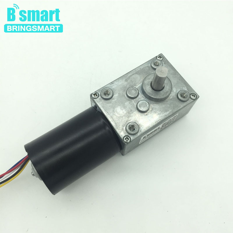 Wholesale 5840-3650 Brushless Dc Motor Worm Gear Motor 24v Brushless Motor With Reversible 12 Volt Gear Motor wholesale 12 30v 8 1040rpm jgb37 3650 gear motor dc 12v brushless engine d shaft for common use bringsmart