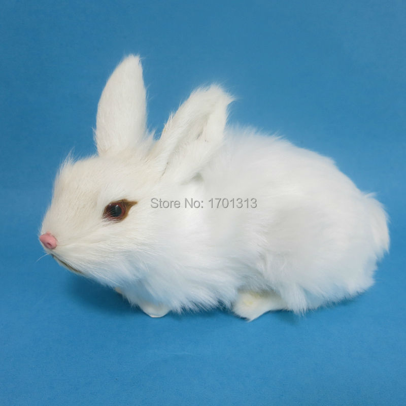 real hair simulation rabbit model decoration for biology class kids kindergarten Rabbit figurines family  Teaching Equipment rene kratz fester biology workbook for dummies