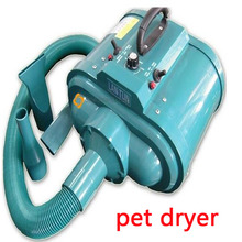 Double Motors 500W-3600W 220V Innovative Superpower Grooming Pet Dog Hair Dryer LT1090D-H