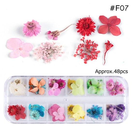 Сухоцветы лист ногтей украшения натуральный наклейка в виде цветка 3D сухой для маникюра ногтей наклейки ювелирные изделия УФ Гель-лак Маникюр TRFL-1 - Цвет: F07