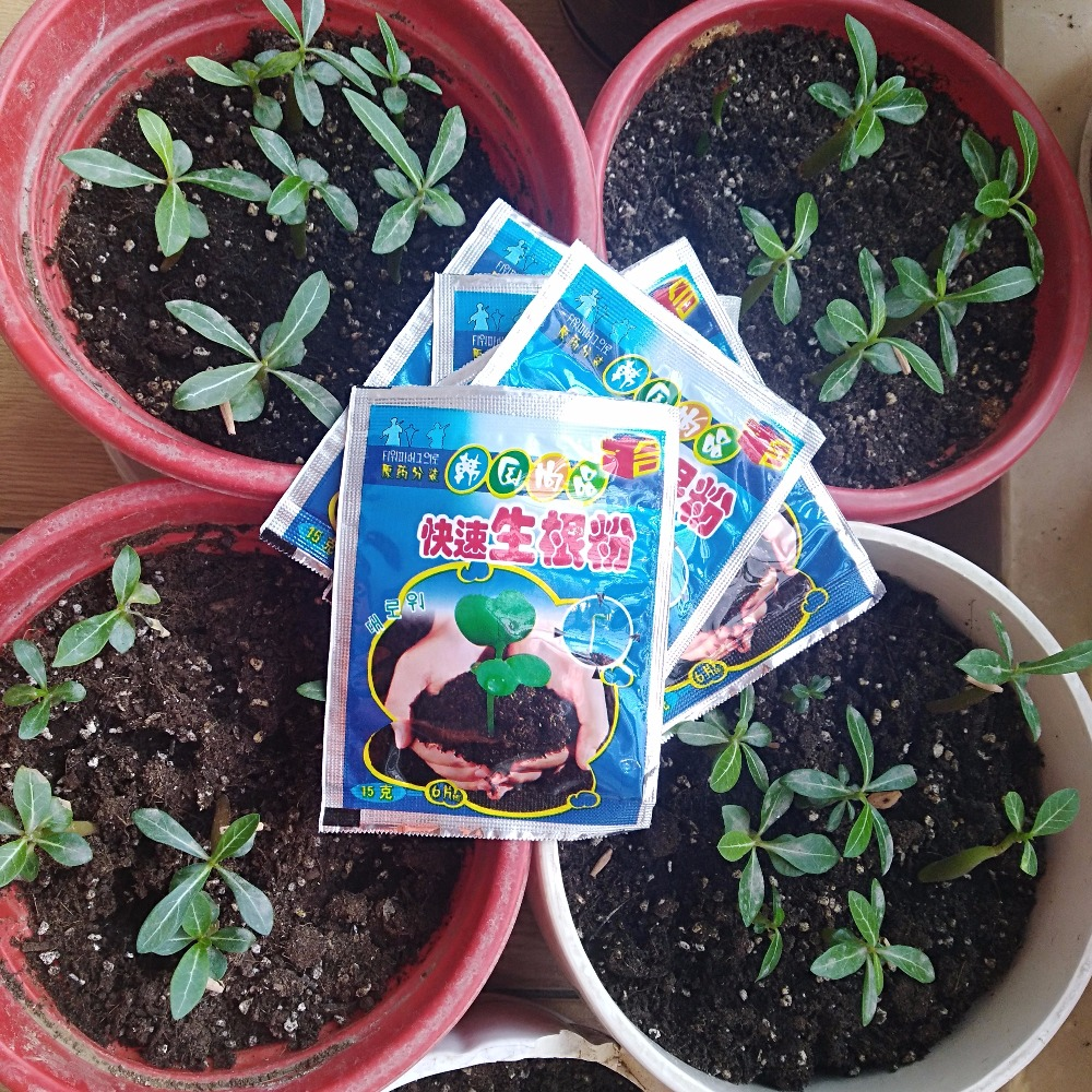 Quickly Rooted Powder Help Sprout Flower Transplanting Cutting Seedlings Anther Fertilizer To Improve Survival Rate