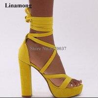 Linamong New Design Open Toe Suede Leather High Platform Gladiator Sandals Ankle Straps Cross Super High Heel Sandals Dress Shoe