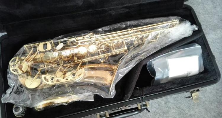 New YANAGISAWA A-992 Alto Saxophone Gold Plated Sax Professional Musical Instruments With Mouthpiece, Case, Accessories free shipping france henri selmer saxophone alto 802 musical instrument alto sax gold curved saxfone mouthpiece electrophoresis