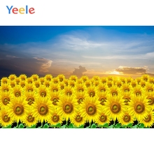 Yeele Summer Sky Sun Flower Beautiful Scenic Garden Photography Backgrounds Customized Photographic Backdrops for Photo Studio
