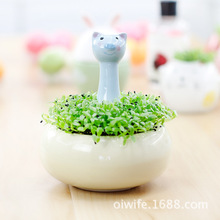 Recommended Keeper explosion models cute animal flowerpot Creative Desktop mini potted plants Factory Direct