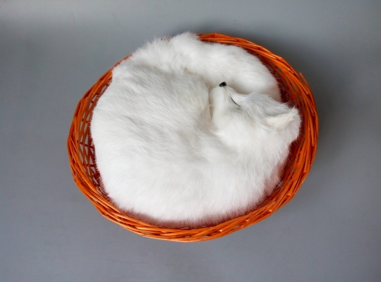 large 28x28cm simulation sleeping fox toy with basket lifelike white fox model decoration gift t156 simulation animal large 30x25 cm lovely cat model lifelike white cat with long tail decoration gift t474