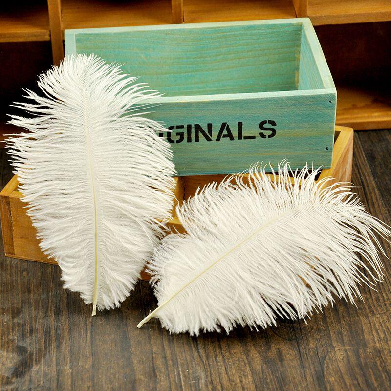 Blanc rose gris de haute qualité plumes d'autruche photographie accessoires Photos fond bricolage décorations pour bijoux Mini articles
