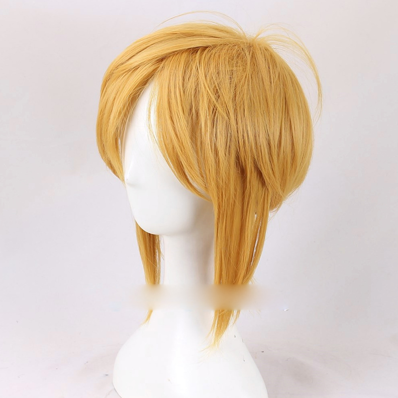 The Legend of Zelda Link Mens Golden Short Straight Synthetic Wig Hair Heat Resistance F ...