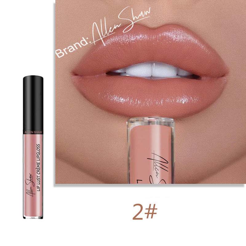Lips Makeup Moisturizer Liquid Lipstick Long Lasting Smooth Creamy Easy to Wear Sexy Waterproof Pigments Lip Gloss Tint Cosmetic 3